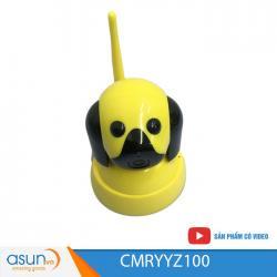 Camera YYZ100