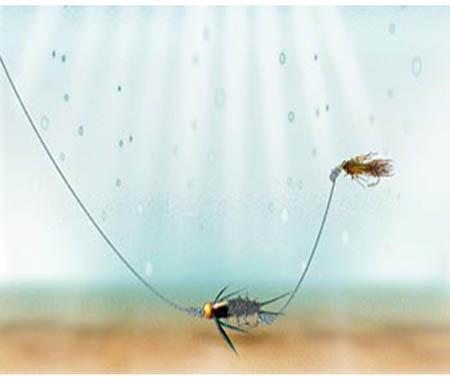 Câu Fly Với Sự kết hợp Mồi Dry-Fly Với Mồi Nymph