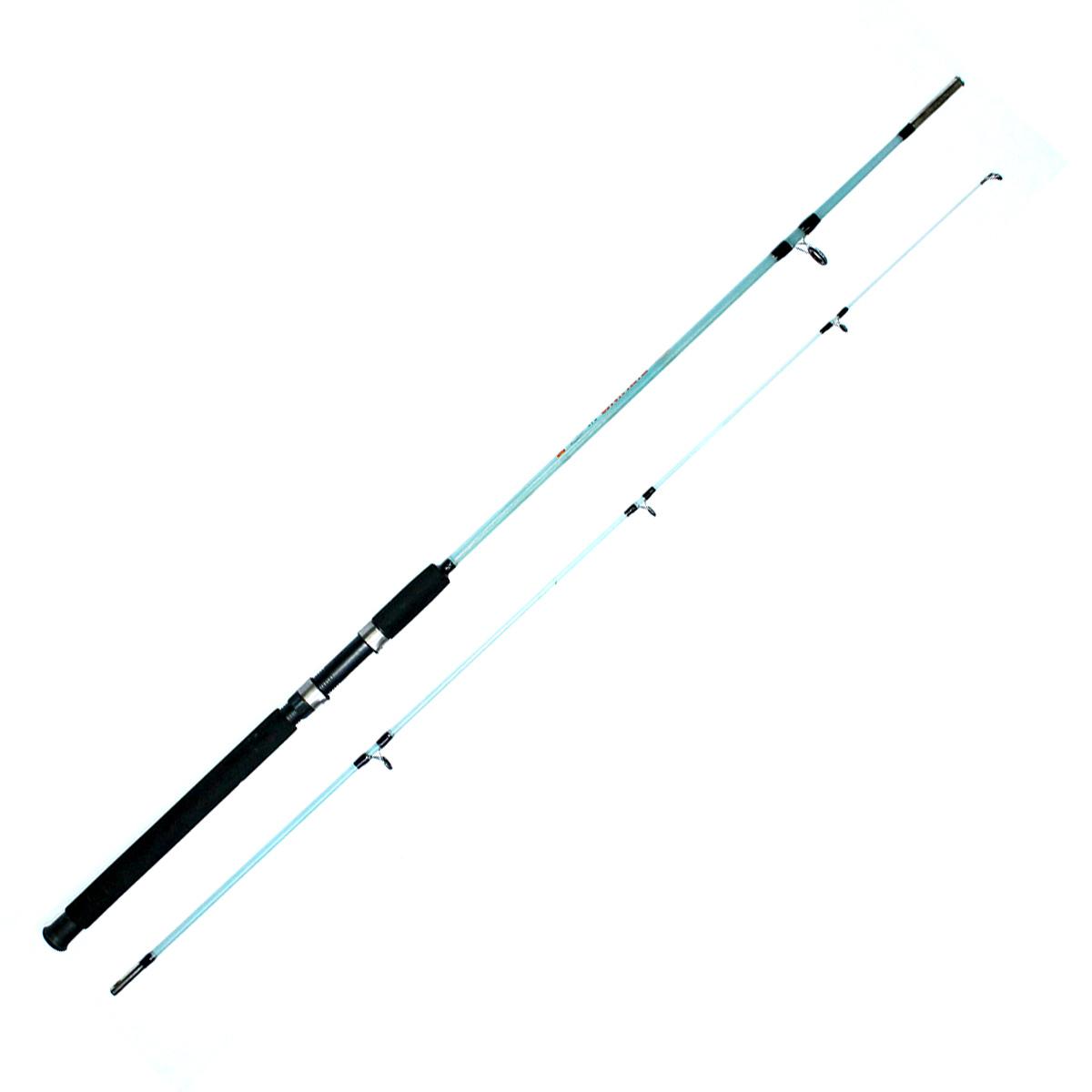 Cần Câu Máy Hai Khúc Đặc Trong Fishing 2402 - 2m4 Cần Phổ Thông
