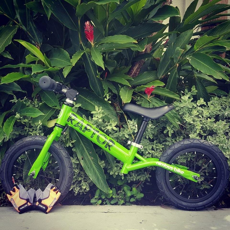 Xe thăng bằng Nimbus Raptor xanh lá