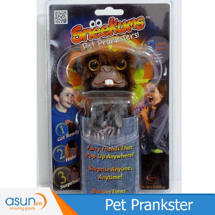 Trò Chơi Pet Prankster