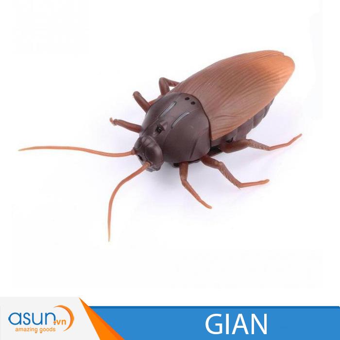 Gián Điều Khiển Từ Xa Giant Roach H1