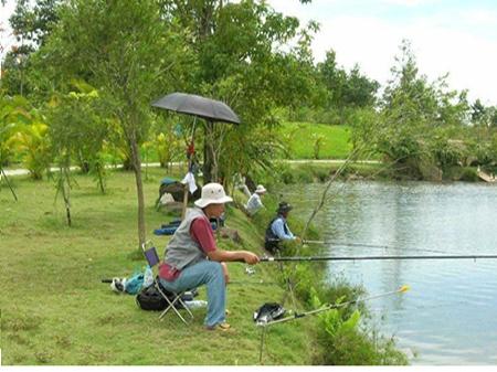 Các địa điểm câu cá lý tưởng tại thành phố Hồ Chí Minh.